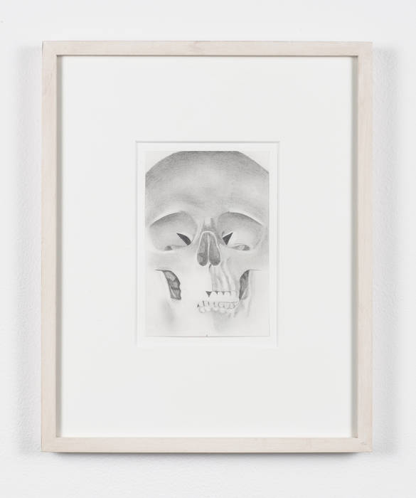 peter dreher untitled skull no 19 graphite on paper sheet 6 x 4 in 152 x 102 cm frame 13 14 x 10 58 in 337 x 27 cm 2006